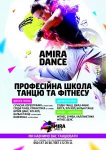 AMIRA2342a3