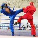В Чернівцях відбувся Чемпіонат України з універсального бою